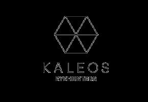 logo__0000s_0000s_0015_kaleos